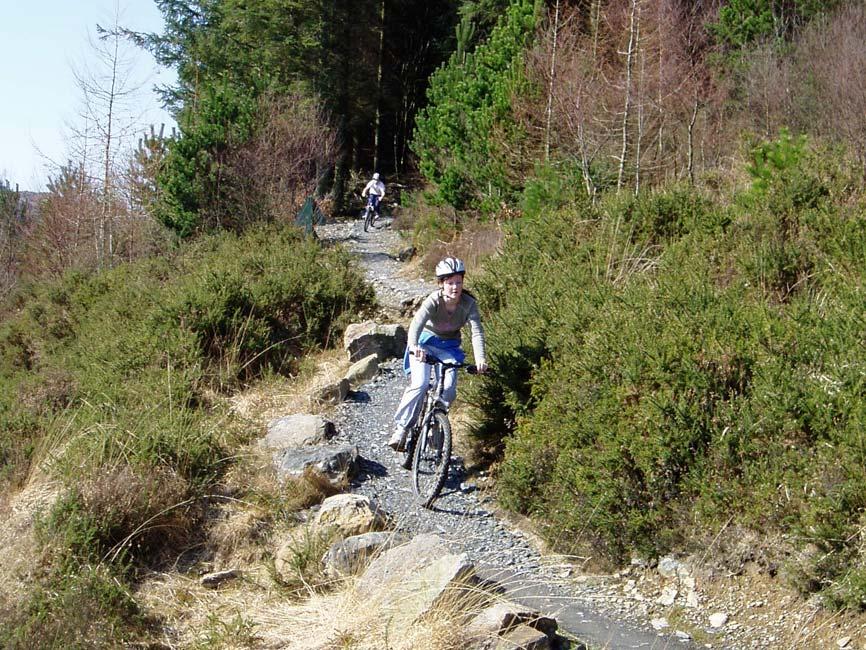 eiriar-bike-024